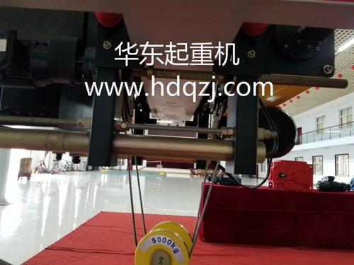 HDHa型进口欧式电动葫芦定制定做